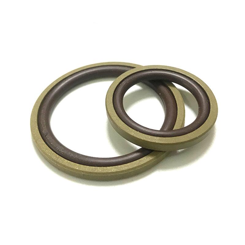 Composite BSF Glyd Ring für Löcher